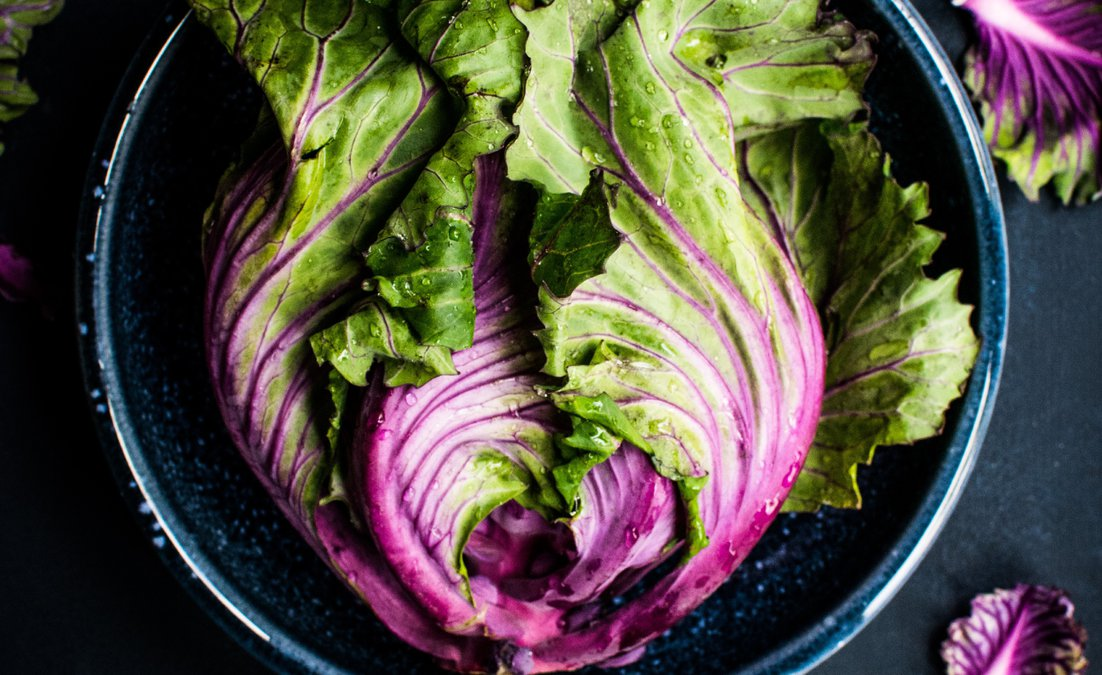 SaladsEqual