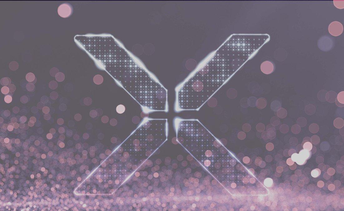 Xyngfest Email Banner-10-10.jpg
